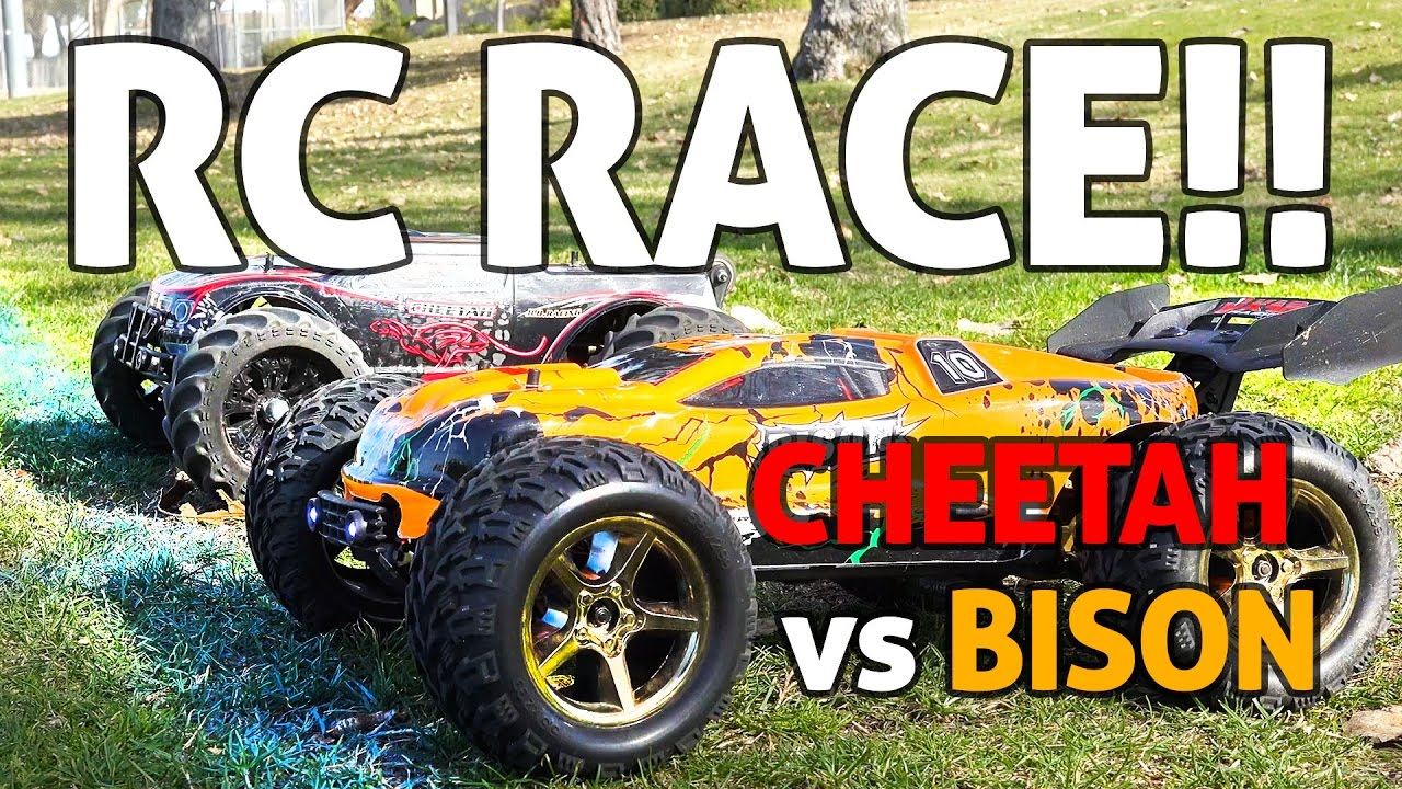 RC Car SPEED RACE!! Cheetah vs Bison