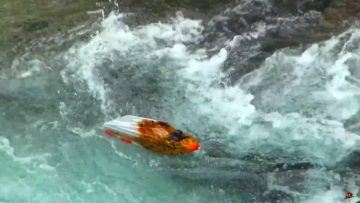 RC ADVENTURES – TURBULENT WATER – THRASHER JET BOATS vs WATERFALL – 5S Lipo – Streamline RC