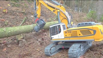 LIEBHERR R970 WORK IN THE WOODS! HEAVY LOAD FOR THE MAZ 537G! BEST RC VEHICVLES 2020