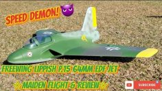 Freewing Lippish P.15 64mm EDF Jet Maiden Flight & Examen