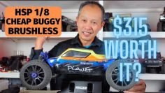 Hsp 94995 RTR (RTR) 1/8 2.4G 4WD Brushless – Is this cheap buggy worthy?